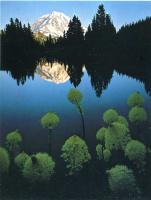 Дэвид Мюнх. Отражение в воде