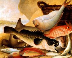 Джон Уильям Левин. Улов рыбы