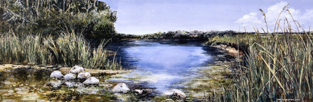 Лора Васулушен. Белый песок реки
