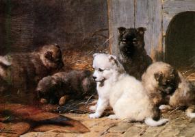 Отто Еерелман. Пять маленьких щенков