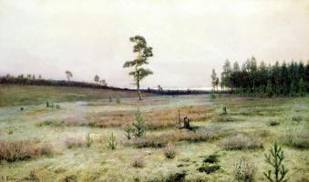 Иван Иванович Ендогуров. Мхи