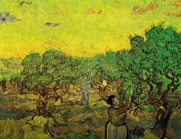 Винсент Ван Гог. Сбор урожая оливок