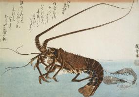 """Utagawa Hiroshige. Lobster and shrimp. A Series Of """"Fish"""""""