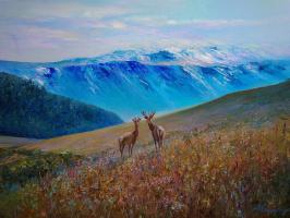 In country deer