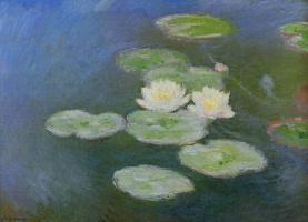 Водяные лилии, вечерний эффект