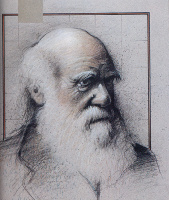 Малкольм Фарли. Портрет мужчины