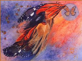 Кэти Морроу. На крыльях паутинка