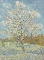 Винсент Ван Гог. Персиковое дерево в цвету