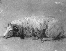 Thomas Gainsborough. Resting sheep. Sketch