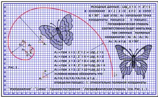 '' Image '': '' Scheme ''; `` Logarithmic spiral '' (l)