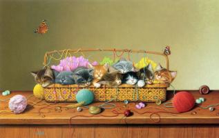 Бралдт Бралдс. Сладкий сон котов