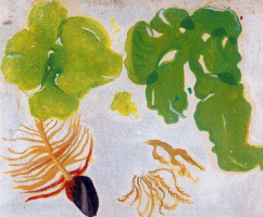 Маруджа Малло. Зеленые краски