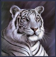Поллианна Пикеринг. Большие кошки 12