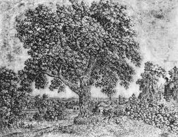 Геркулес Сегерс. Большое дерево