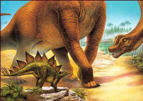 Алекс Эбель. Брахиозавр и Стегозавр