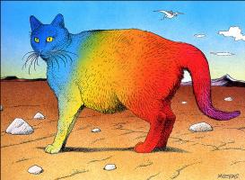 Майкл Мебиус. Радужный кот