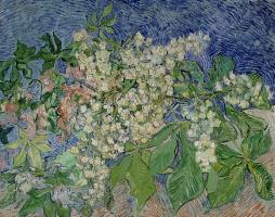 Vincent van Gogh. Branch of a flowering chestnut