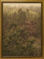 K. Grechuk. Fairy Forest