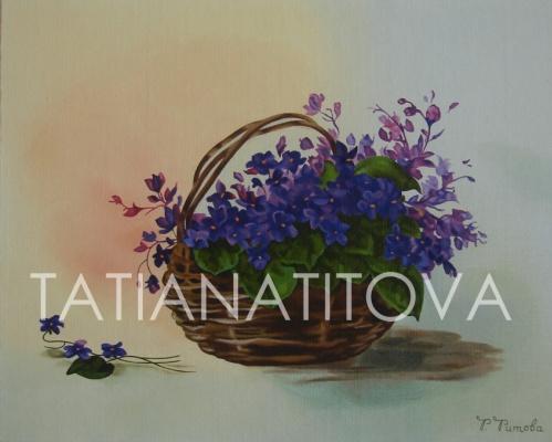 Татьяна Титова. Фиалки
