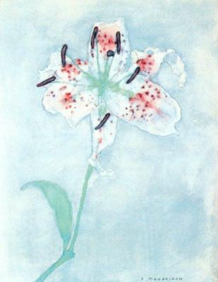 Piet Mondrian. Lily
