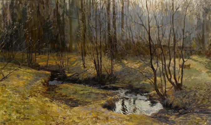 Stanislav Yulianovich Zhukovsky. Forest stream