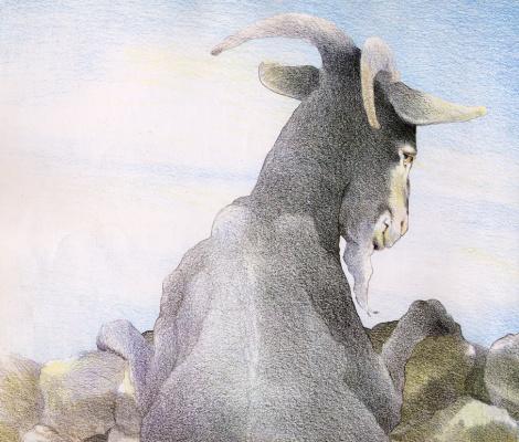 Дэвид Йоргенсен. Коза