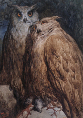 Paul Gustave Dore. Owls