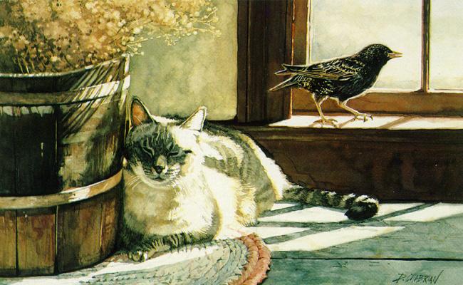 Дебора Чабриан. Кот и птица