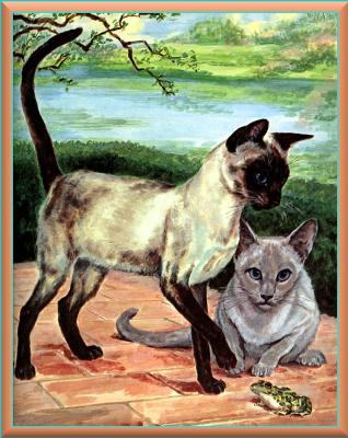 Мардж Опиц Буридг. Кошачье искусство 11