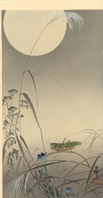 Ohara Koson. Grasshopper