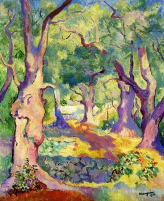 Анри Манген. Оливковые деревья