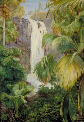 Марианна Норт. Водопад и пальмы в ущелье, Праслин, Сейшелы