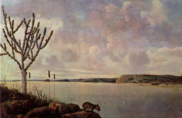 Франс Янс Пост. Река Сан Франциско