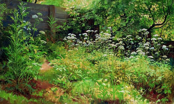 Ivan Ivanovich Shishkin. Goutweed-grass. Pargolovo