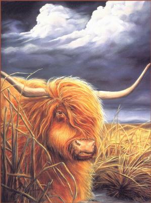 Кимбал Аллен. Горная корова