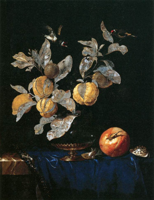 Willem van Aelst. Still life with birds and fruit