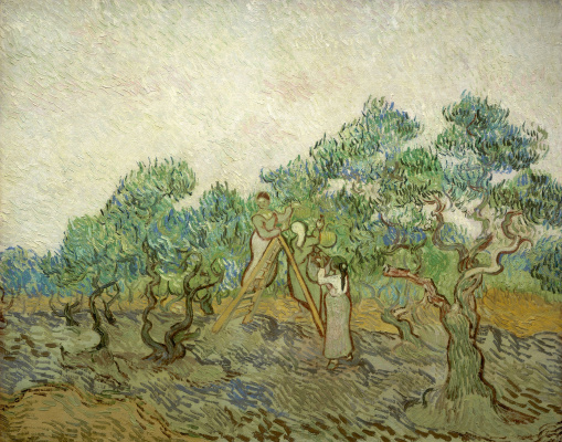 Vincent van Gogh. Picking olives (optional)