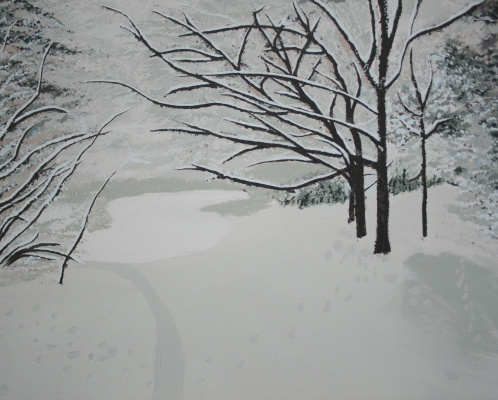 Gertjan Buijs. Snowy woods