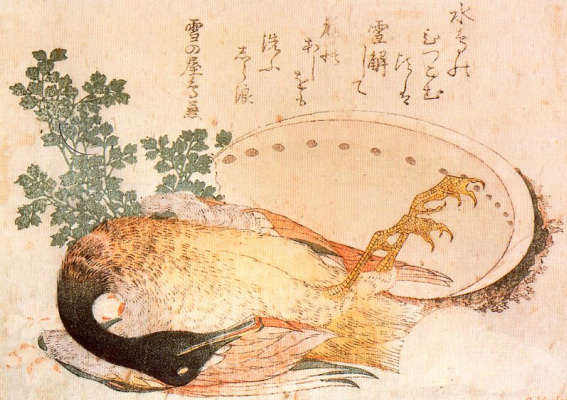 Katsushika Hokusai. Killed a duck