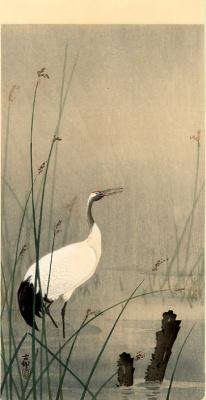 Охара Косон. Птицы 80