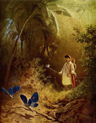 Карл Шпицвег. Ловец бабочек