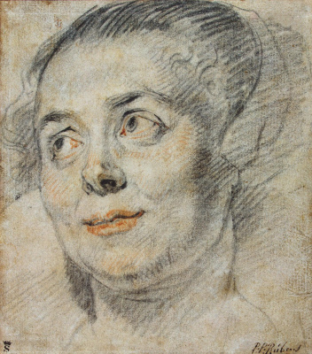 Jacob Jordaens. Etude female head
