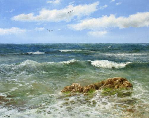 Сергей Владимирович Дорофеев. Only the sea and the sky around