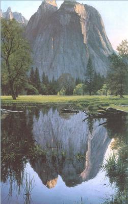 Марк Вебер. Отражение горы