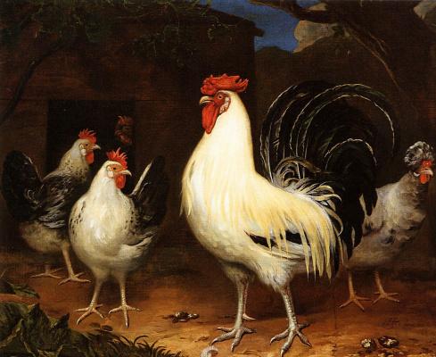 Хендрик Тен Увер. Петух с цыплятами