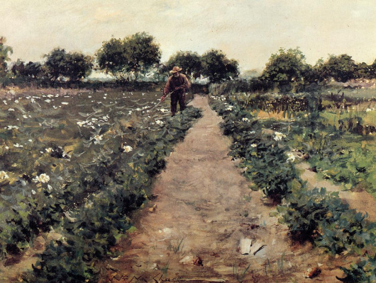 William Merritt Chase. Potato field