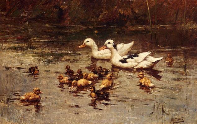 Иоганн Фредерик Халк. Плавающие утки