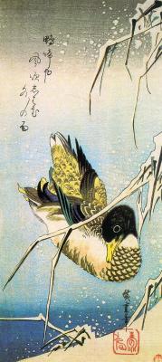 Утагава Хиросигэ. Утка-кряква среди заснеженного тростника