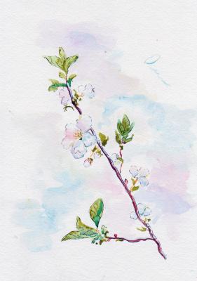Ekaterina Viktorovna Mitrofanova. Cherry blossom