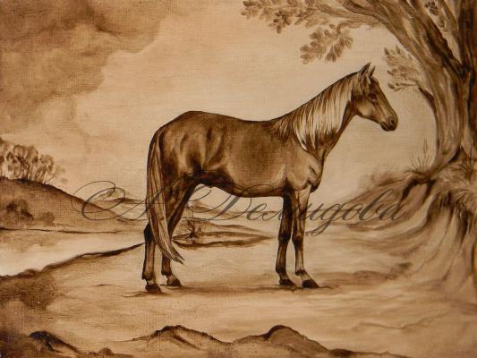 Александра Демидова. Арабская порода лошади